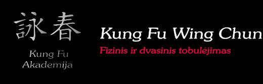 Kungfu Akademija